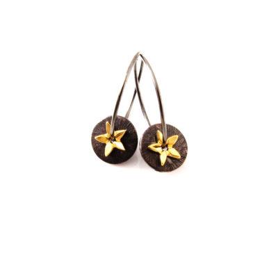 EA373_oxideret creol med mønt og stjerne